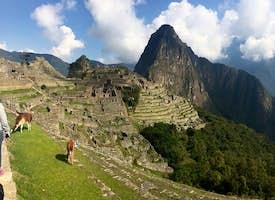 Explore Machu Picchu Live Virtual Tour's thumbnail image