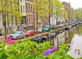 Virtual Live Walking Tour of Amsterdam's Highlights & Lowlights!'s thumbnail image