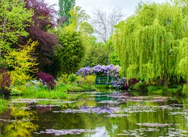 Giverny's Claude Monet Gardens 's thumbnail image
