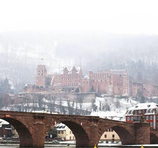 Tour of Heidelberg Castle & Old Town's gallery image