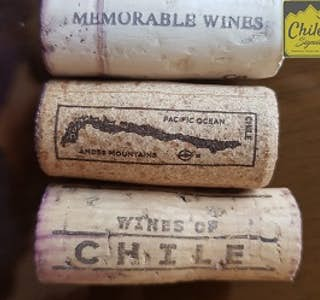 Wine: Everything you need to know before enjoying a glass of Wine's gallery image