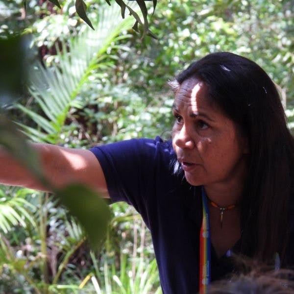 Virtual Aboriginal Tour of Cape Byron's main gallery image