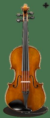 Albert Nebel Series+ VA601+