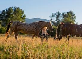 A Day at Dunrovin Ranch's thumbnail image
