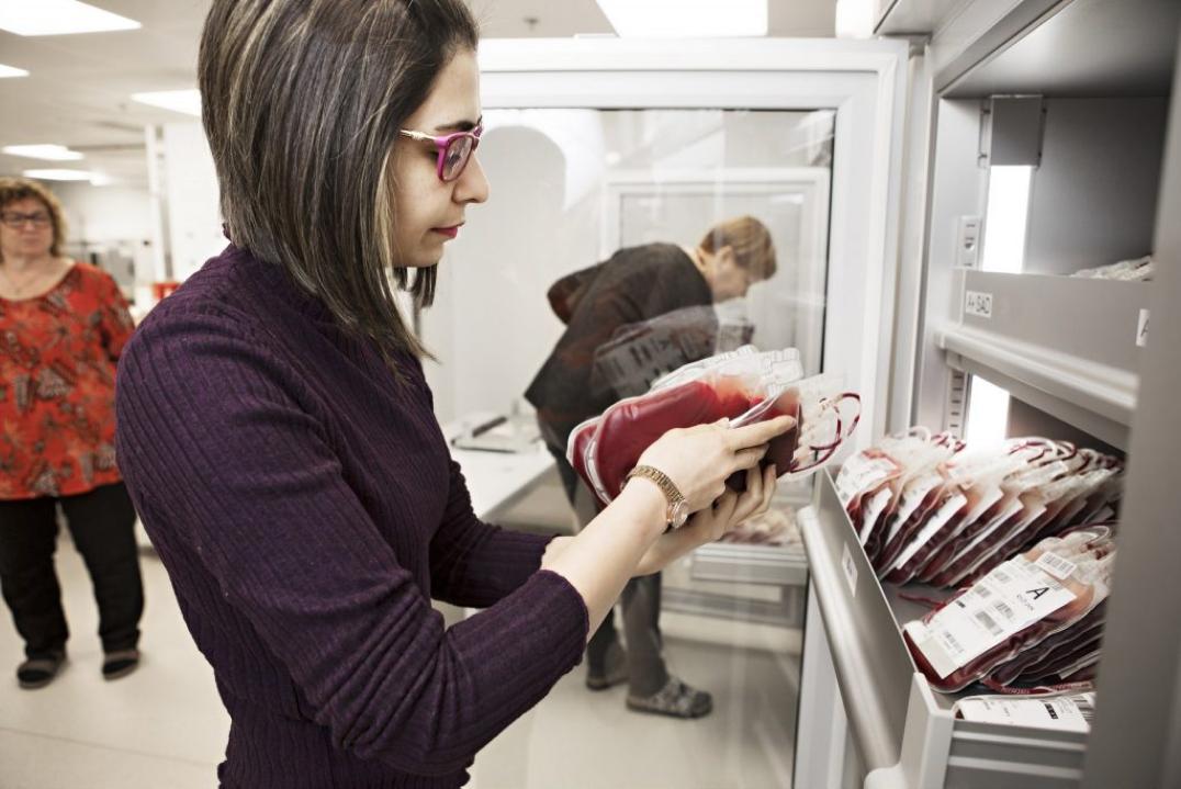 Työntekijä tarkastamassa veripusseja