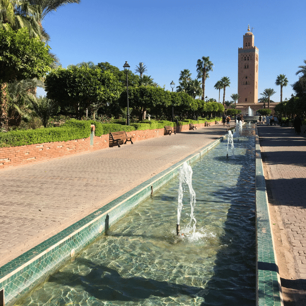 Live from Marrakech Morocco! Discover the famous Jemaa El-fna Square 's main gallery image