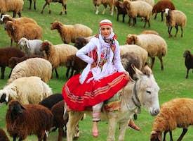 Iran Nature and Culture Tour's thumbnail image