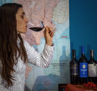 Enjoy a tasting of the iconic Malbec wine, Argentina's flagship variety's gallery image