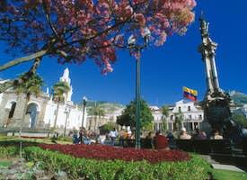 Ecuador - Quito & the Galapagos Islands's thumbnail image