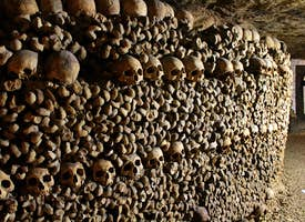 The Catacombs of Paris's thumbnail image