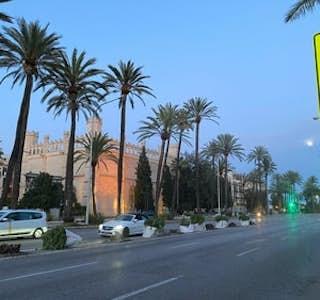 Palma  de Mallorca Virtual Tour's gallery image