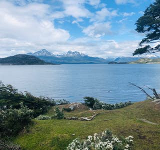 Tour to Tierra del Fuego National Park's gallery image