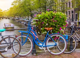 A Bicycle Adventure in Amsterdam: Online City Tour's thumbnail image