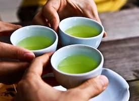 Tokyo Online: Green Teatime in Japan's thumbnail image