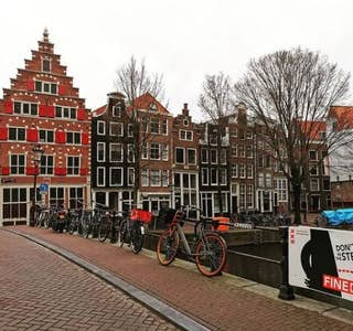 Virtual Live Walking Tour of Amsterdam's Highlights & Lowlights!'s gallery image