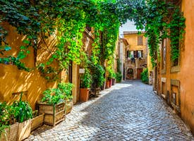 Ancient Rome: Online City Walk with a Writer's thumbnail image