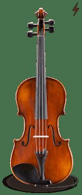 Electro Acoustic VL305-EAV
