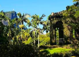 Rio de Janeiro Botanical Garden's thumbnail image