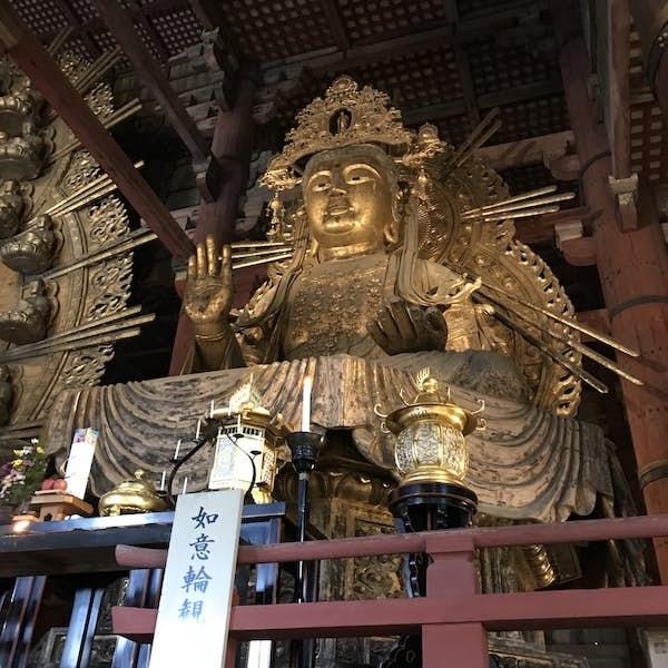 Nara Todaiji Temple Tour's main gallery image