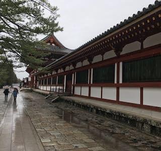 Nara Todaiji Temple Tour's gallery image