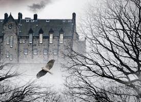 Scotland's Darkest Secrets Tour's thumbnail image