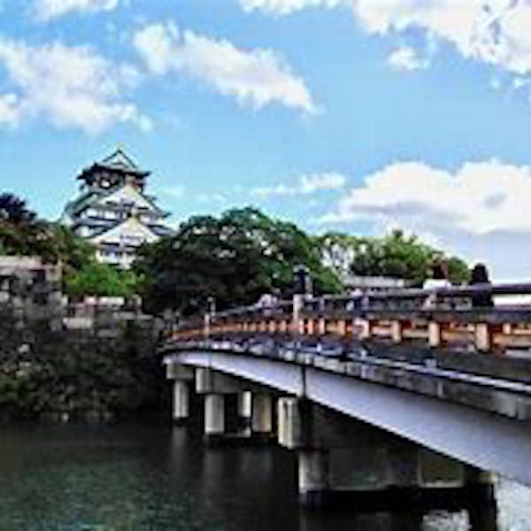 Osaka Castle Grounds Walk-a-bout and History Tour's main gallery image