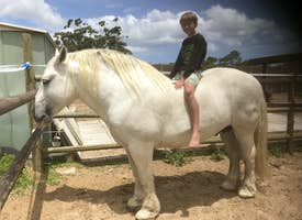 My Little Pony's thumbnail image