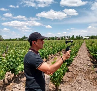 It is all about Malbec: A guided walking tour of an Argentine vineyard's gallery image