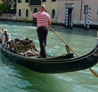 Venice and Rialto Bridge Highlights Live Virtual Tour's gallery image