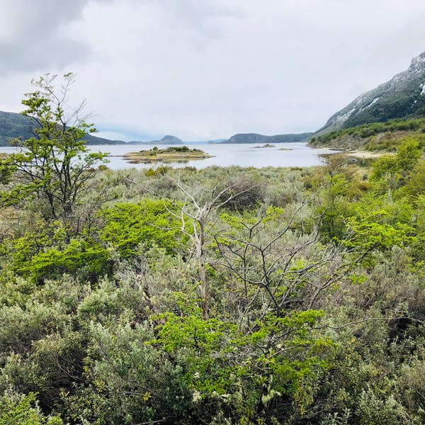 Tour to Tierra del Fuego National Park's main gallery image